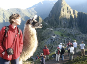 Carmen and Llama look on in Peru